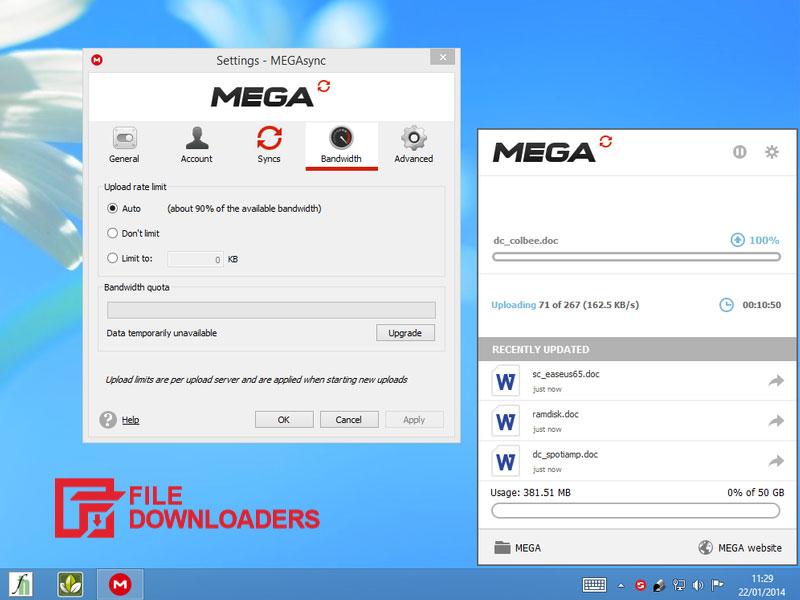 MEGAsync for Windows