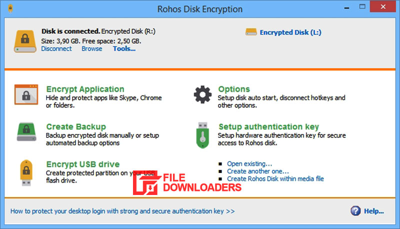 Rohos Disk Encryption for Windows